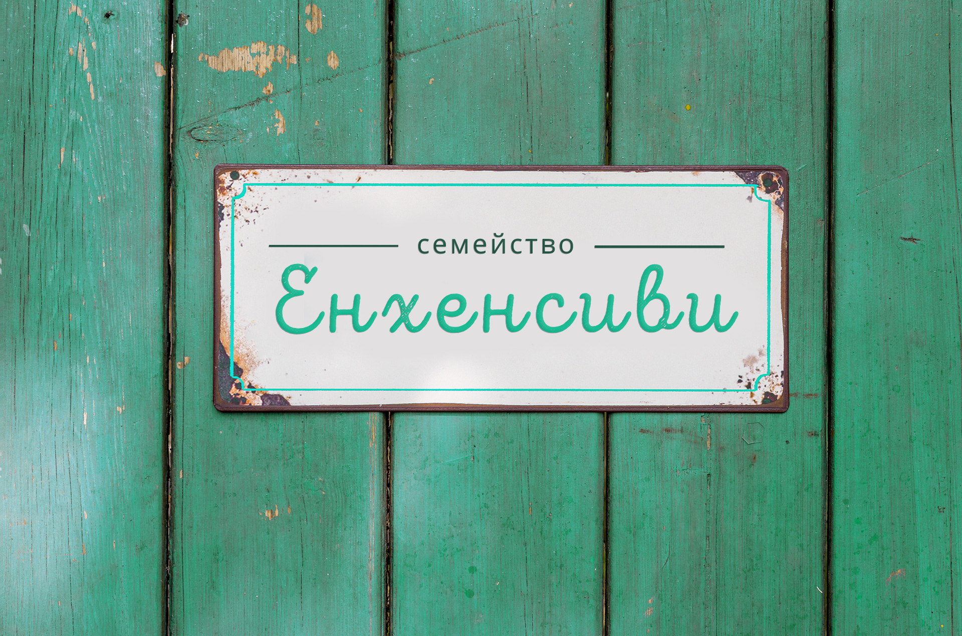 Enhancv Family Door Sign